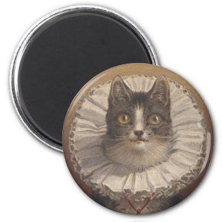 Imán divertido del gato de Edwardian del vintage