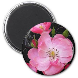 Imán el capullo de rosa minúsculo se abre