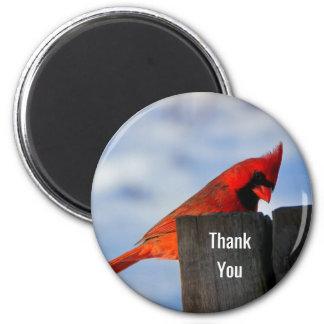 Imán El cardenal rojo en tocón de madera le agradece