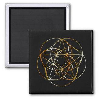 Imán Espiral de Fibonacci la geometría sagrada