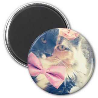 Imán Estilo retro de Maine del gatito lindo del Coon