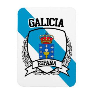 Imán Flexible Galicia