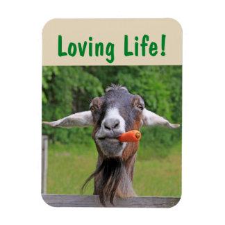 Imán Flexible Inspiración de la cabra