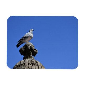 Imán Flexible Pájaro de New York City del cielo azul de la