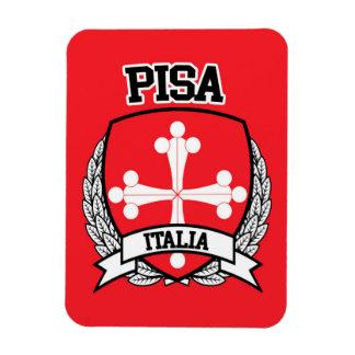 Imán Flexible Pisa
