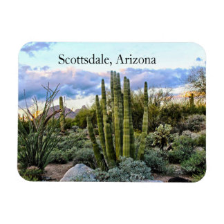 Imán Flexible Puesta del sol suculenta de Scottsdale,