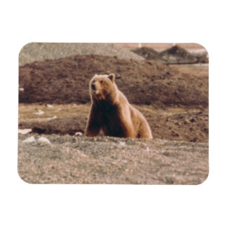 Imán Flexible Refrigerador del ártico de la cerda del grisáceo
