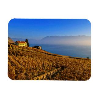 Imán Flexible Región de Lavaux, Vaud, Suiza