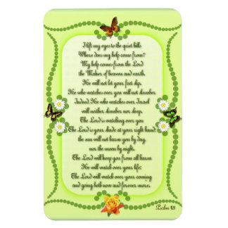 Imán Flexible Salmo 121