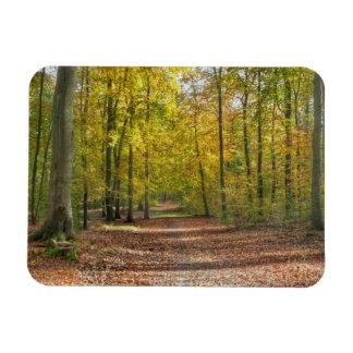 Imán Flexible Tierra Wald de Barnimer