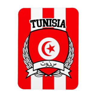Imán Flexible Túnez