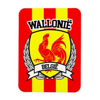 Imán Flexible Wallonië
