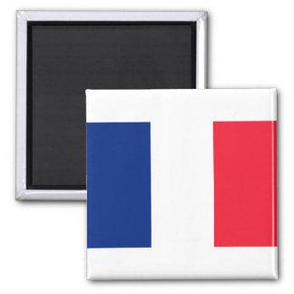 Imán francés de la bandera
