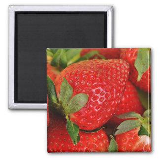 Imán Fresas dulces rojas