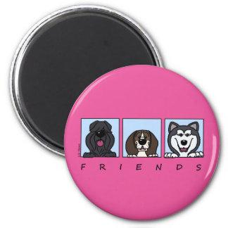 Imán Friends: Bouvier, pachón & Alaskan Malamute,