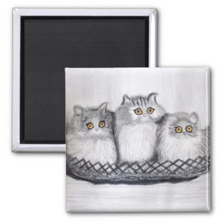 Imán gatitos