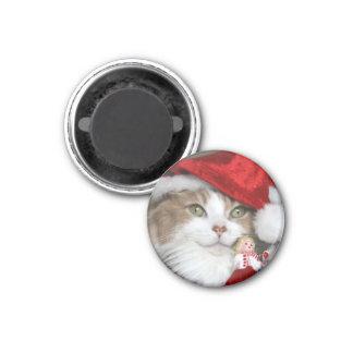 Imán Gato de Santa - gato del navidad - gatitos lindos
