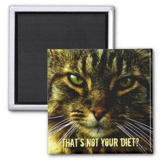 Imán Guardia divertido de la dieta del gato