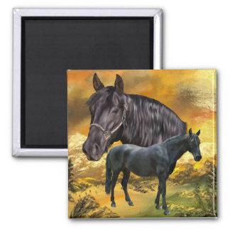 Imán Impresión andaluz del caballo