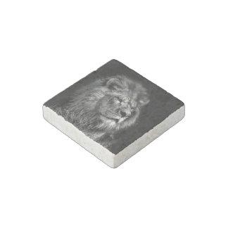 Imán joven orgulloso de la piedra del león
