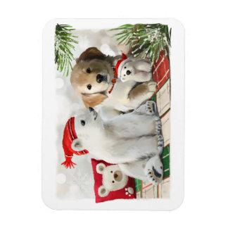 Iman Labrador de oro y el oso polar