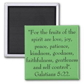 Imán Las frutas del alcohol son amor, alegría, paz