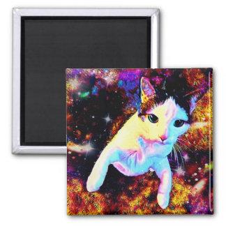 Imán lindo colorido del disco del gatito de la