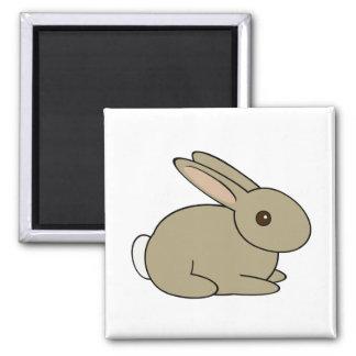 Imán lindo del conejo de conejito del dibujo