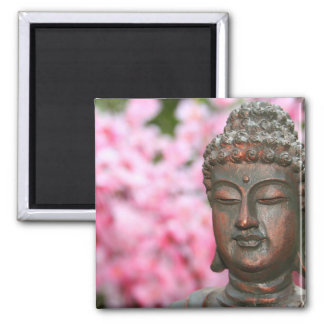 Imán Meditating de Buda