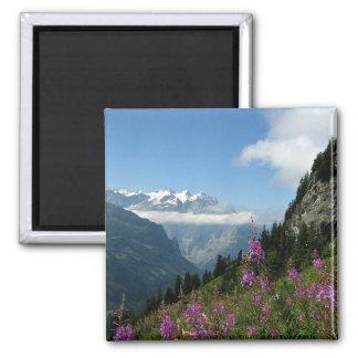 Imán Montañas, Suiza
