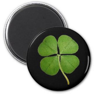 Imán Negro real del trébol del trébol de 4 hojas