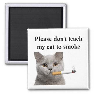 Imán No enseñe por favor a mi gato a fumar