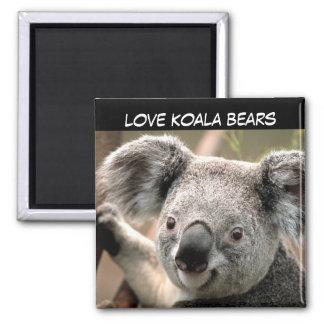 Imán Oso de koala lindo