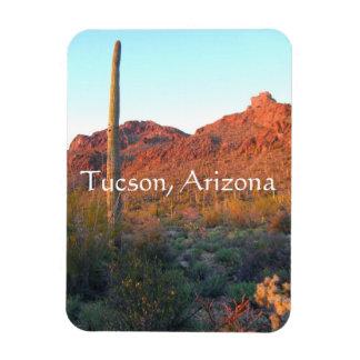 Imán Parque nacional de Saguaro, Tucson Arizona