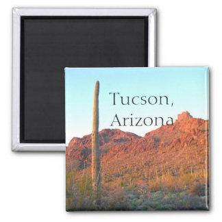 Imán Parque nacional Tucson, Arizona de Saguaro