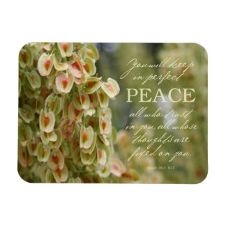 Imán perfecto de la paz