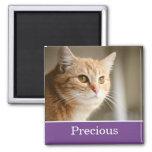 Imán personalizado púrpura de la foto del mascota
