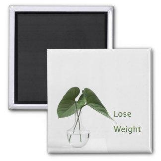Imán Pierda las metas de la dieta del peso