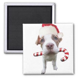 Imán Pitbull del navidad - pitbull de santa - perro de