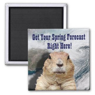 Imán Pronóstico de la primavera de Groundhog
