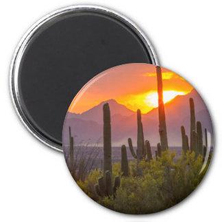 Imán Puesta del sol del cactus del desierto, Arizona