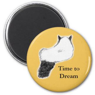 Imán redondo del gato, hora de soñar, amarillear