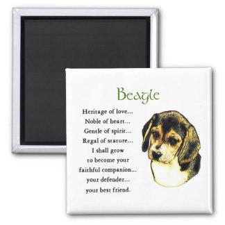 Imán Regalos del beagle