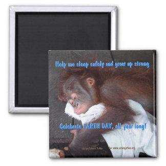 Imán Reserva del Día de la Tierra el bebé del orangután