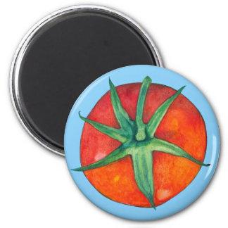 Imán rojo del azul del tomate