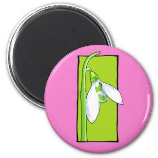 Imán rosado verde de Snowdrop