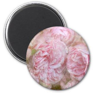 Imán Rosas románticas - tic de novela Roses