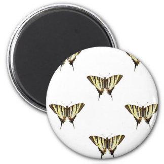 Imán separe hacia fuera las mariposas