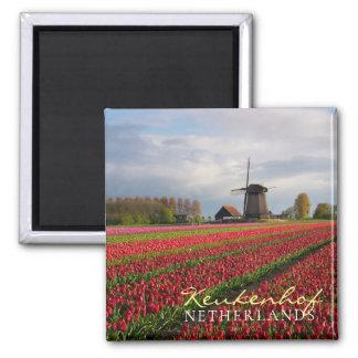 Imán Tulipanes rojos y un molino de viento