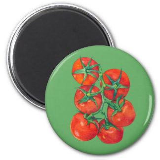 Imán verde de los tomates rojos